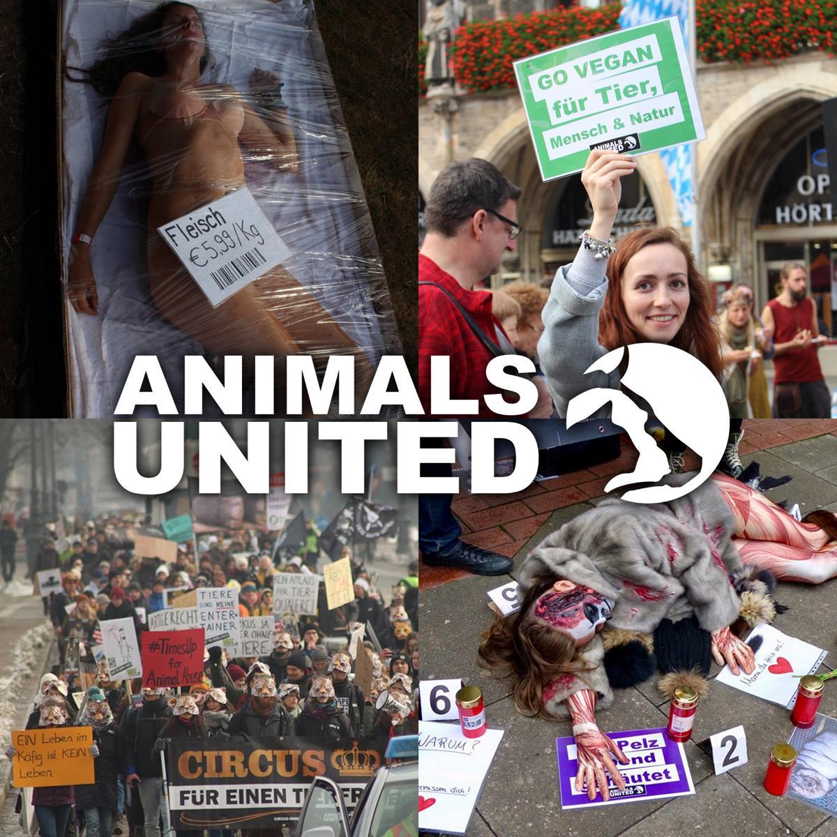 Animals-United_Logo
